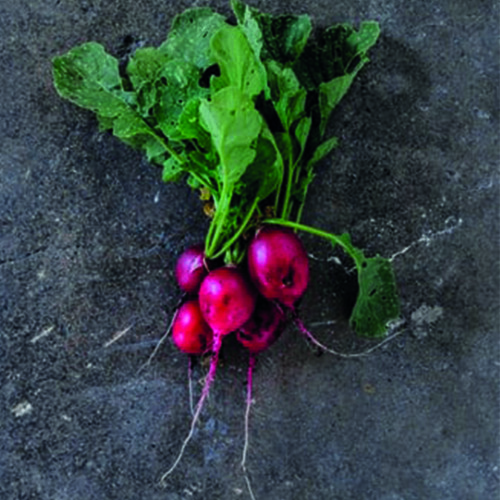 verdura ravanelli